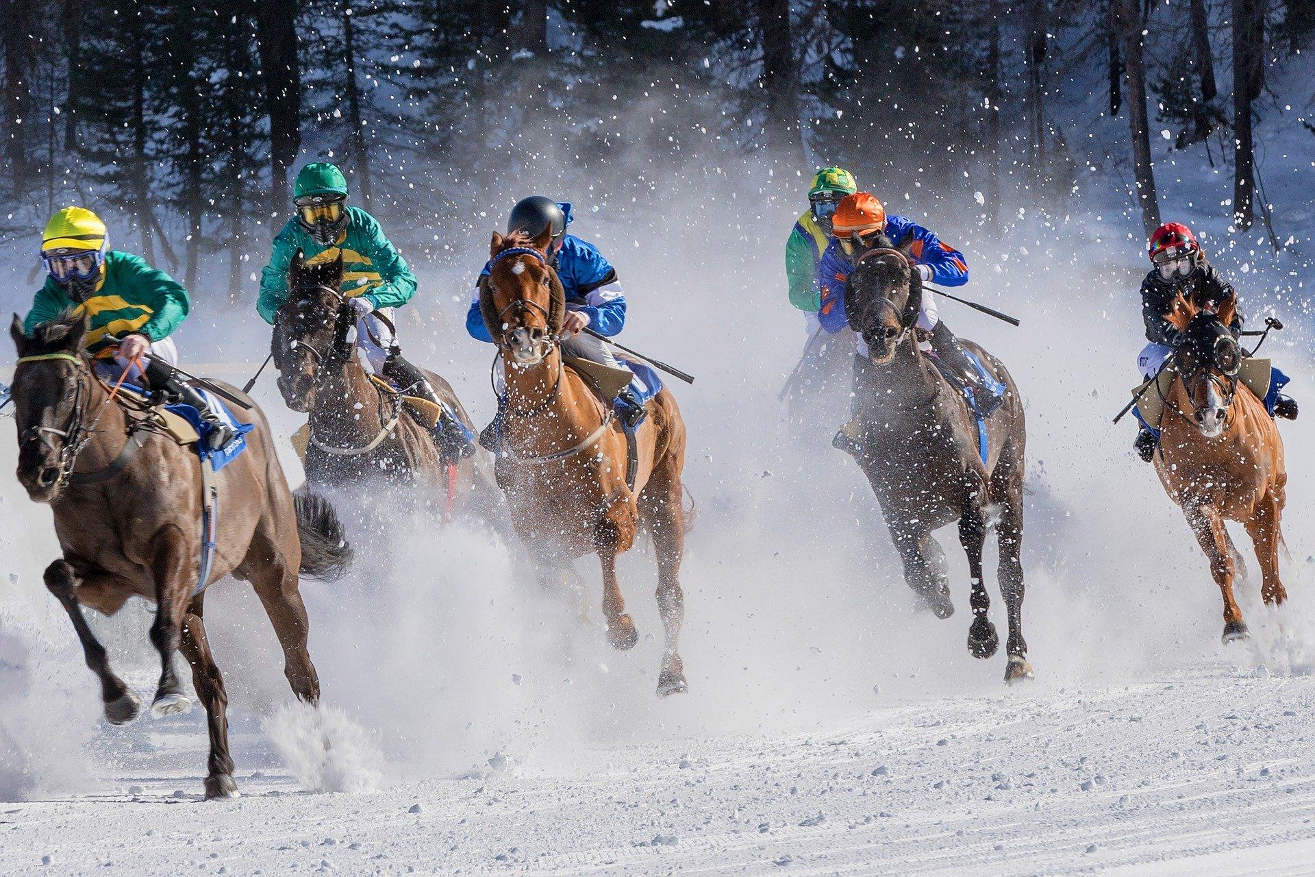 muži na koních